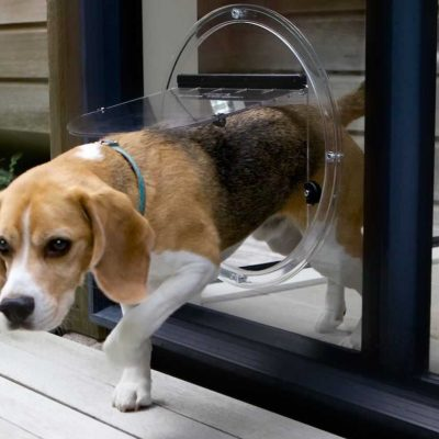 Pet Doors In Glass Doors 4 Paws