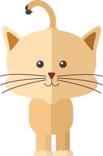 Cat_Graphic